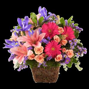Centros de flores coloridos